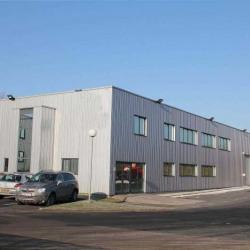 Location Bureau Roncq 600 m²