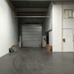 Location Local d'activités Vaulx-en-Velin 889,5 m²