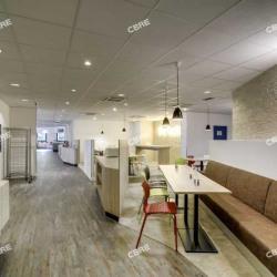 Location Bureau La Plaine Saint Denis 1658 m²