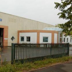 Vente Local d'activités L'Union 990 m²