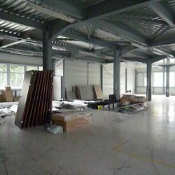 Location Bureau Montmélian 430 m²