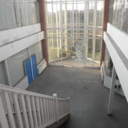 Location Local d'activités Libercourt 14460 m²