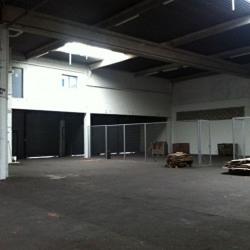 Location Local d'activités Bruges 1123 m²
