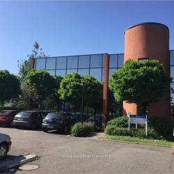 Location Bureau Toulouse 513 m²