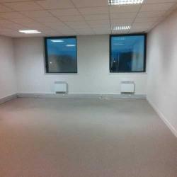 Location Bureau Ivry-sur-Seine 497 m²