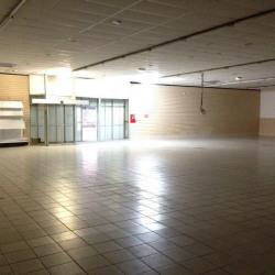 Location Local d'activités Saint-Grégoire 600 m²