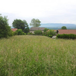 Vente Terrain Collonges 455 m²