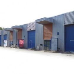 Location Local d'activités Cosne-Cours-sur-Loire 300 m²
