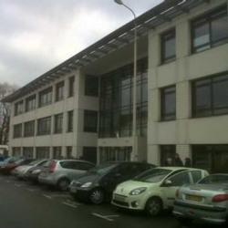 Location Bureau Lyon 7ème 769,78 m²
