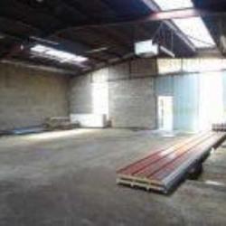 Location Local d'activités Romainville 990 m²