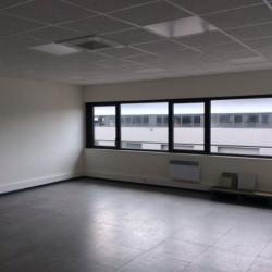 Vente Local d'activités Ferrières-en-Brie 415 m²