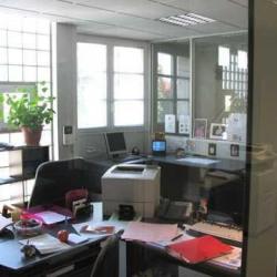 Location Local d'activités Saint-Maur-des-Fossés 263 m²
