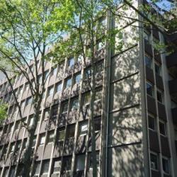 Location Bureau Lyon 6ème 400 m²