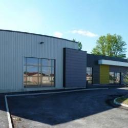 Location Local d'activités Châtenoy-le-Royal 900 m²