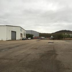 Vente Local d'activités Sandouville 46000 m²