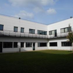 Location Local d'activités Lieusaint 325 m²