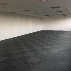 Vente Local d'activités Argenteuil 1200 m²