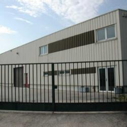 Location Local d'activités Égly 910 m²