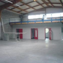 Location Local commercial Beaucouzé 520 m²