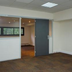 Location Bureau Saint-Rémy-lès-Chevreuse 53 m²