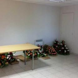 Location Bureau Meyzieu 60 m²