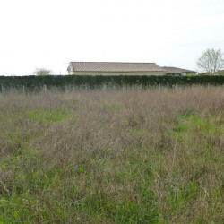 Vente Terrain Moulin-Neuf 2187 m²