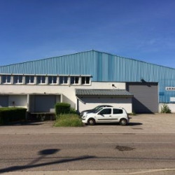 Location Local d'activités Genas 1400 m²