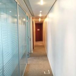 Location Bureau Paris 8ème 85 m²