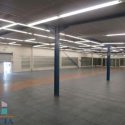 Location Local commercial Mont-de-Marsan 502,78 m²
