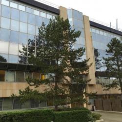 Location Bureau Vélizy-Villacoublay 1120 m²