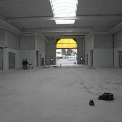 Location Local d'activités Palaiseau 346 m²