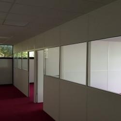 Location Entrepôt Saint-Thibault-des-Vignes 181 m²