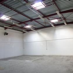 Location Local d'activités Combs-la-Ville 230 m²