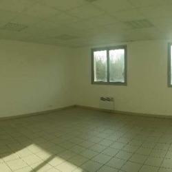 Location Entrepôt Sucy-en-Brie 120 m²