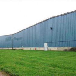 Vente Entrepôt Wasquehal 9000 m²