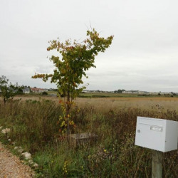 Vente Terrain Notre-Dame-d'Oé 4000 m²