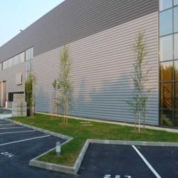 Location Local d'activités Lieusaint 2895 m²