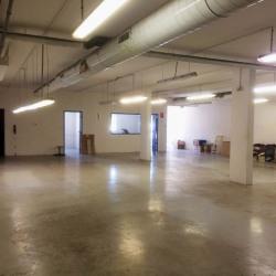 Vente Entrepôt Nîmes 247 m²