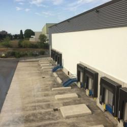 Location Entrepôt Saint-Ouen-l'Aumône 16562 m²
