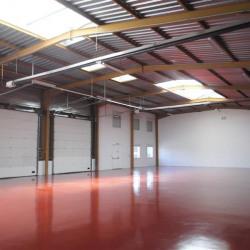 Location Local d'activités Vénissieux 744 m²