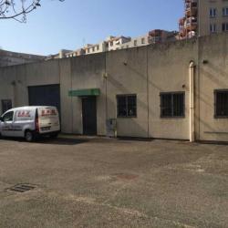 Vente Local d'activités Villeurbanne 400 m²