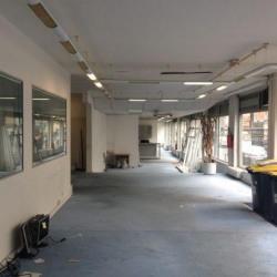 Location Local d'activités Boulogne-Billancourt 392 m²