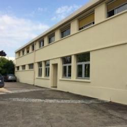 Vente Local d'activités Brie-Comte-Robert 3760 m²