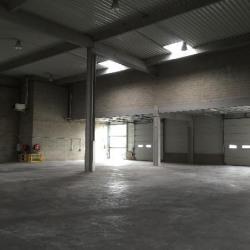 Location Local d'activités Élancourt 1626 m²