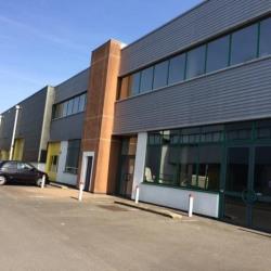 Location Local d'activités Argenteuil 217 m²