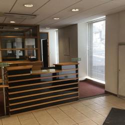 Vente Bureau Brest (29200)
