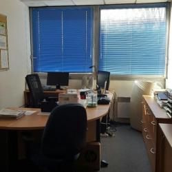 Location Bureau Sucy-en-Brie 263 m²