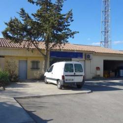 Location Local d'activités Six-Fours-les-Plages 176 m²