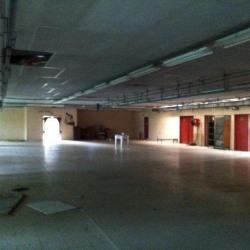 Location Local d'activités Saint-Jean-de-Bournay 720 m²