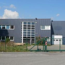 Vente Local d'activités Weyersheim 1170 m²